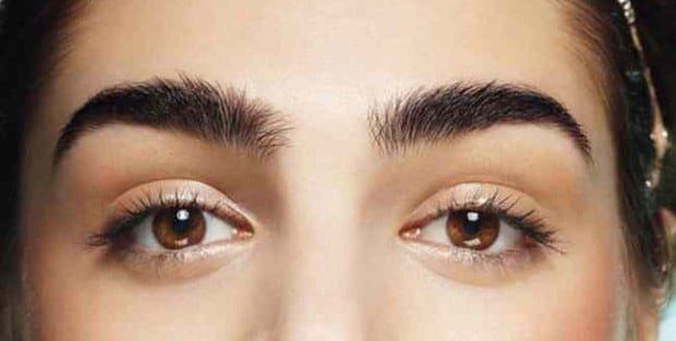 Facts about your eyebrows